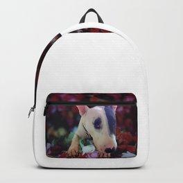 Bullterrier Luki Backpack
