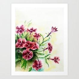 Petunias Art Print