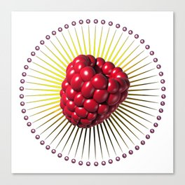 raspberry, sweet and sexy fruit with aureole Canvas Print
