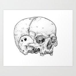 Homo sapien Art Print