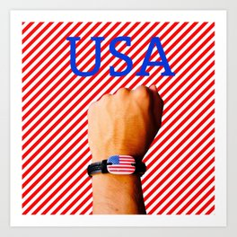US Patriot Art Print