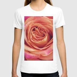 A Summer Bouquet 12 - orange rose T-shirt