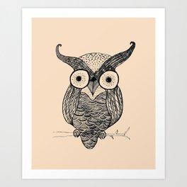 An Owl.  Art Print