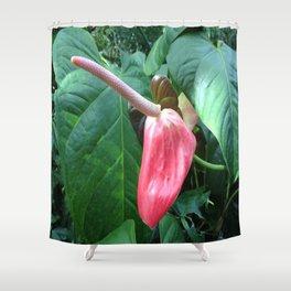 Anthurium Bloom Shower Curtain