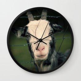 The Goat II Wall Clock