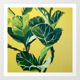 Foliage III / Fiddle Leaf Fig Art Print