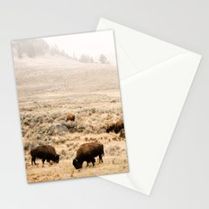 A Snow Storm Blowing In Stationery Cards