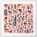 cactus and mushrooms II!! by franciscomffonseca