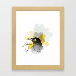 Myna, Birds of Thailand Framed Art Print