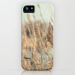 Marsh Grasses iPhone Case