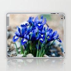 Iris Watercolor Laptop & iPad Skin