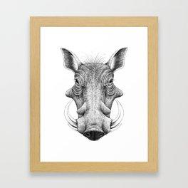 Warthog Framed Art Print