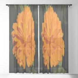 dew on orange Sheer Curtain