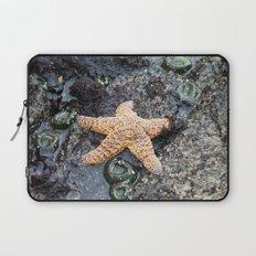 Starfish - La Push Laptop Sleeve