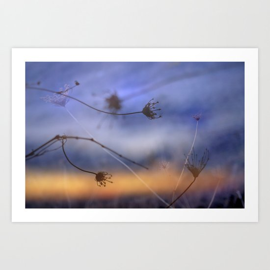 Wind dance Art Print