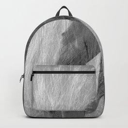 sketch Backpack