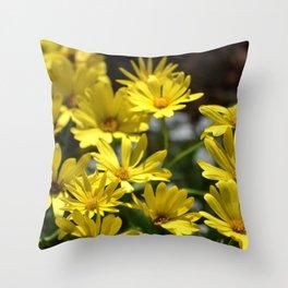 Delightful Little Yellow Daisies Throw Pillow