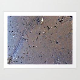 Bird Tracks in Mud at Low Tide Below the Casco Bay Bridge (1) Art Print