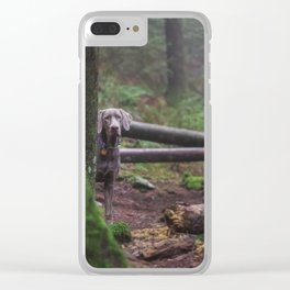 dog peeking out behind the trees Clear iPhone Case