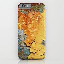 Colors of Rust 894 / ROSTart iPhone Case