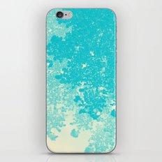 952 iPhone & iPod Skin