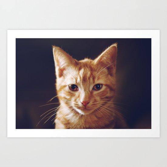 Kitty 2 Art Print