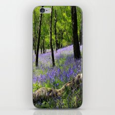 Bluebell Wood. iPhone & iPod Skin