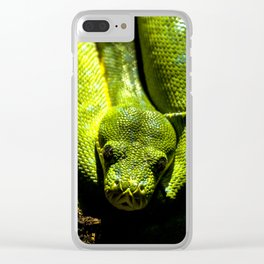 Shakti Clear iPhone Case