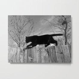 Black Cat Strut Metal Print