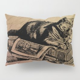 Vintage Cat Collage-Grunge Background Pillow Sham