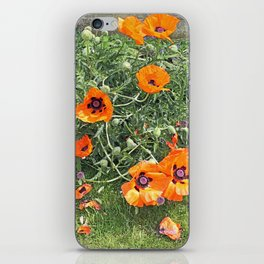 South winds jostle them; poppies in the garden iPhone Skin
