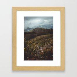 Wildflowers in autumn Framed Art Print