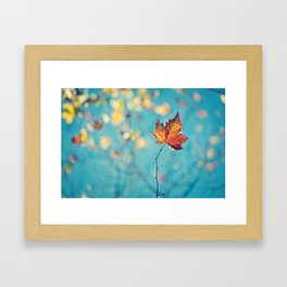 Colorful Autumn Framed Art Print