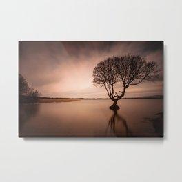 The Kenfig Tree Metal Print