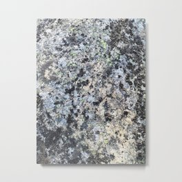 Nature lover's abstract art - Lichen on granite Metal Print