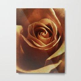 Dirty Rose Metal Print