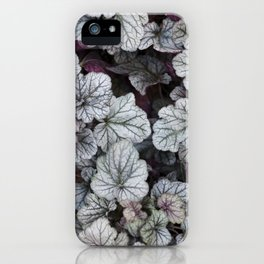 Silver Scrolls iPhone Case