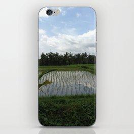 Sunrice iPhone Skin