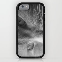 Lady of Riverdance iPhone Case