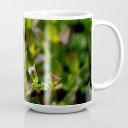 About to Blossom Coffee Mug