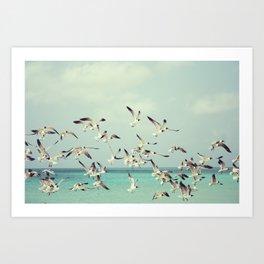 Flock of Seagulls and the Ocean Art Print
