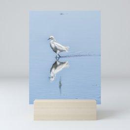 Strutting Snowy Egret from Chincoteague Mini Art Print
