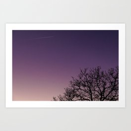 A bare tree in the sunset. Art Print