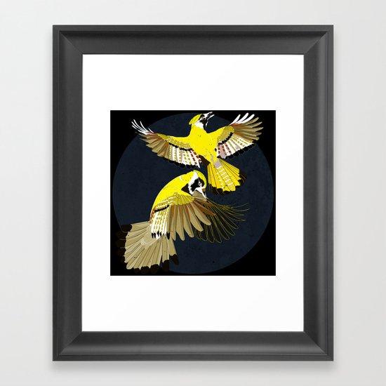 Blue Jays. Framed Art Print