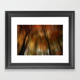 Autumn Scene  Framed Art Print