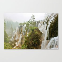 Nature's Beauty II Canvas Print