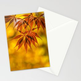 Maple in the gold fall Stationery Cards