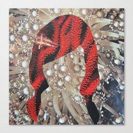 coral freek Canvas Print