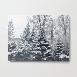 Let It Snow Photography Metal Print