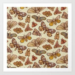 Moth Pattern Art Print